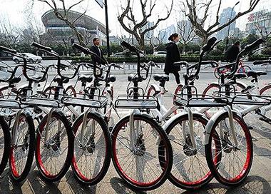 """杭州西湖边 共享单车不再""""围城"""""""