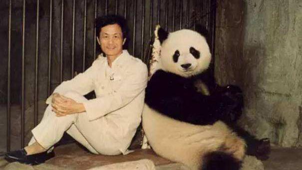 """""""熊猫盼盼""""原型辞世它的一生堪称传奇"""