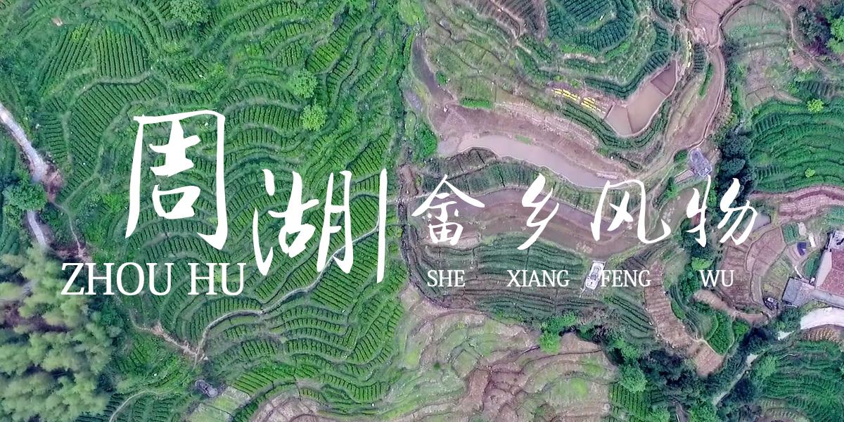 """美丽乡村在""""浙""""里:【第5集】畲乡风物周湖"""