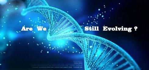 人类进化论