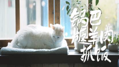 日食记_20190107_锅巴版羊肉抓饭