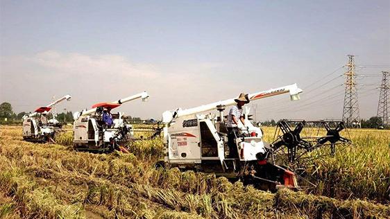 习近平:建设好生态宜居的美丽乡村 让广大农民有更多获得感幸福感