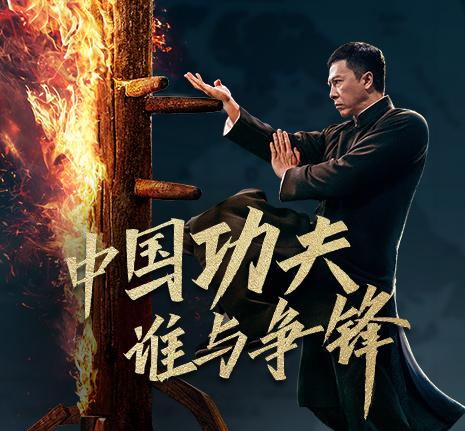 中国功夫,谁与争锋