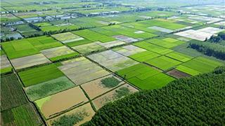 我国将新增万亩高标准农田
