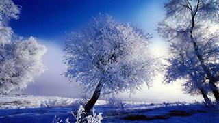 黑龙江漠河入秋降雪