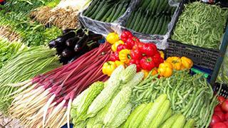蔬菜价格呈季节性下行趋势